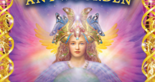 engelen-antwoorden